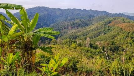 viaggio-in-laos_da-thailandia-a-vieng-phukha-prima-tappa-8